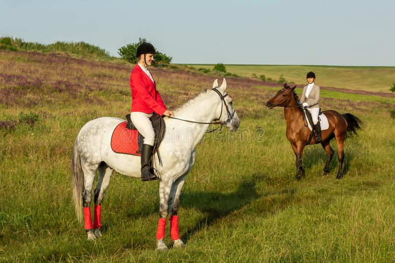 Horseback riders. Two attractive women ride horses on a green meadow royalty free stock photo