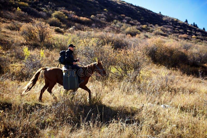 Download Horseback Riding stock image. Image of majestic, tourist - 20322709