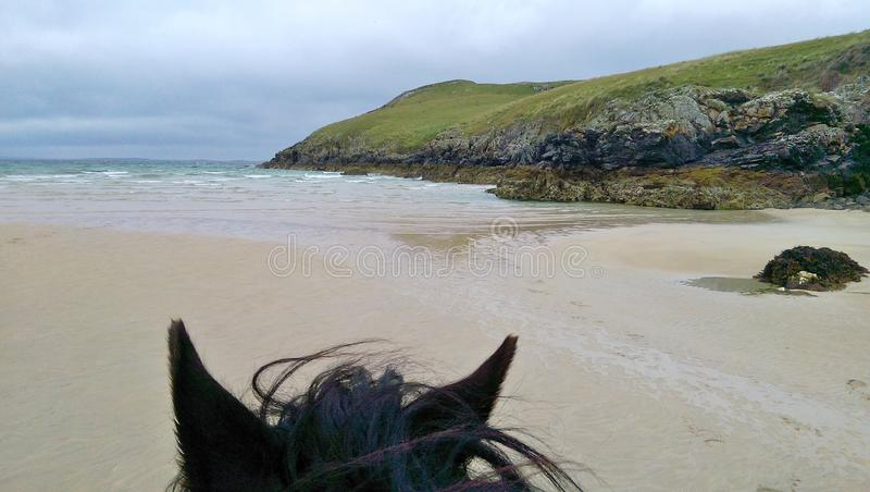 Horseback riding on the beach stock images