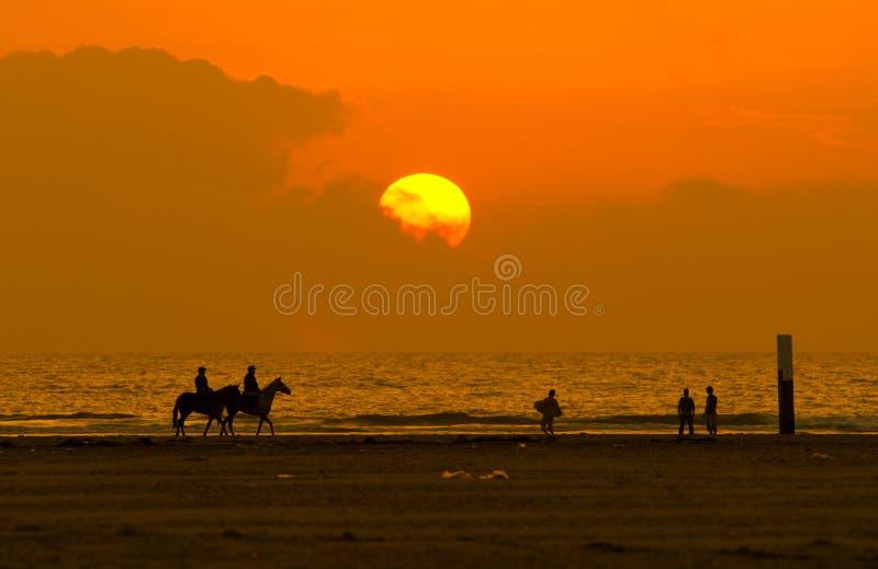 Horseback riding and sunset stock images