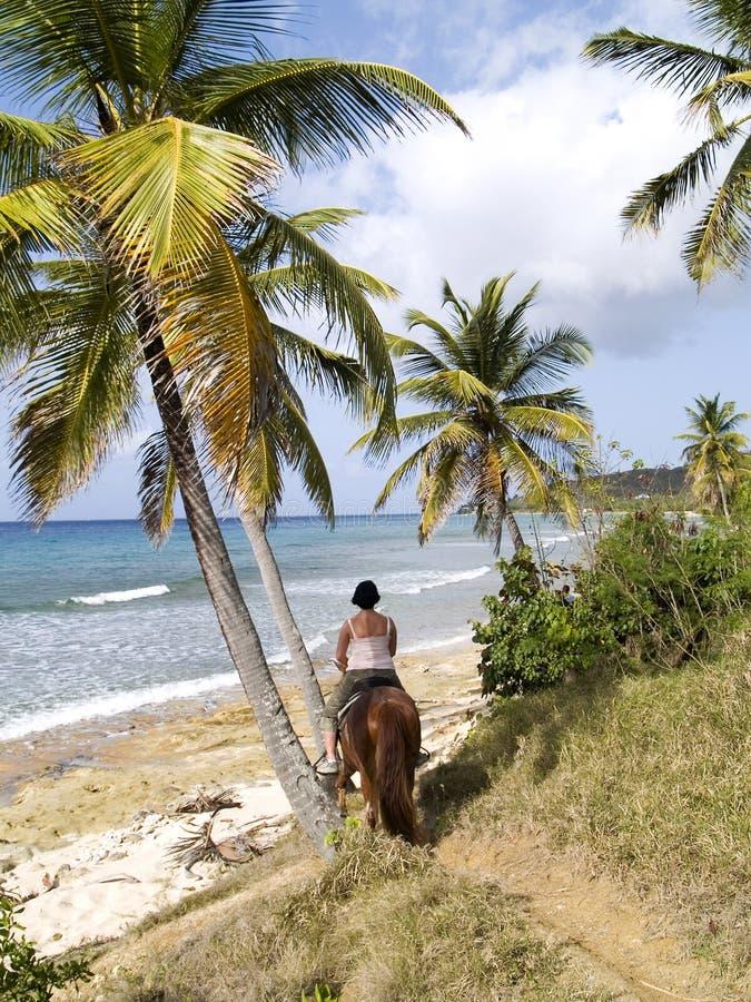 Horseback Ruiter door het Overzees royalty-vrije stock foto's