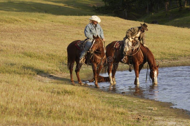 Horseback Ruiters bij Waterpoel stock afbeeldingen