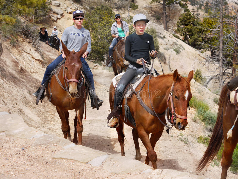 Horseback ruiters, Bryce Canyon stock afbeelding