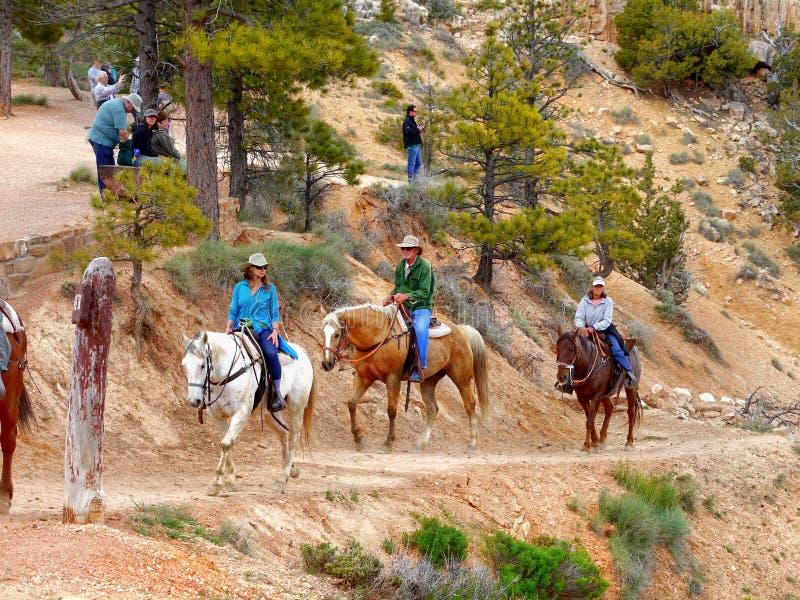 Horseback ruiters, Bryce Canyon royalty-vrije stock afbeeldingen