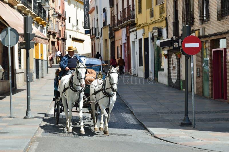 Horsed vagn i den spanska staden arkivbild