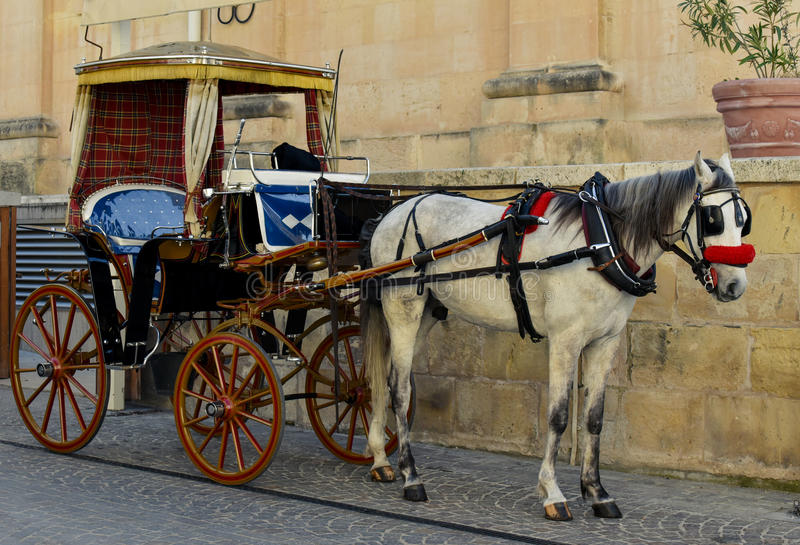 Horsedrawn экипаж в Валлетте Мальте стоковая фотография rf