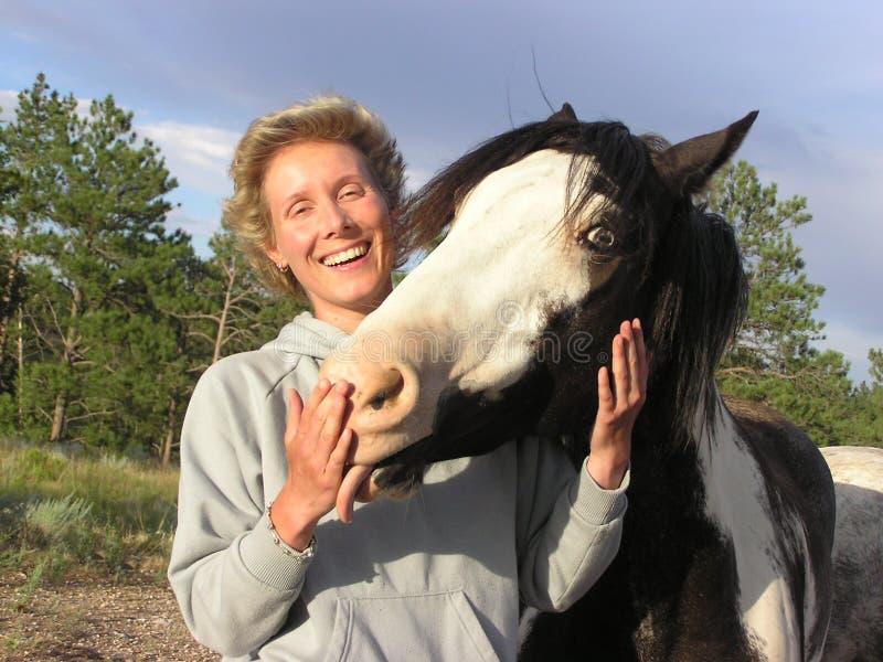 HorseFun photo libre de droits