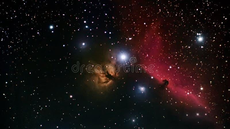 Horsehead星云外层空间美丽的夜空Horsehead星云是在星座猎户星座的暗星云 库存图片
