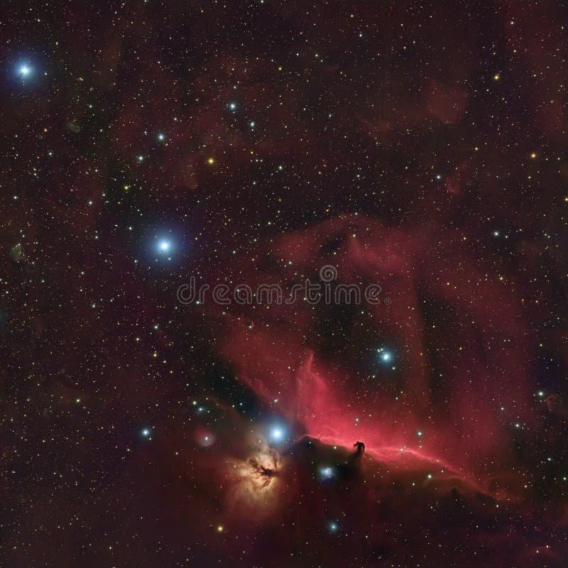 Horsehead mgławica w Orion fotografia royalty free