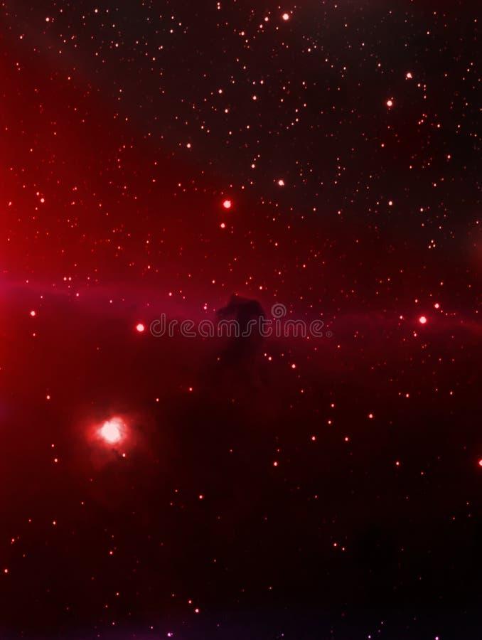 Horsehead Nebelfleck stockfotos