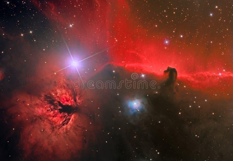 HorseHead und Flamme-Nebelfleck lizenzfreie stockbilder