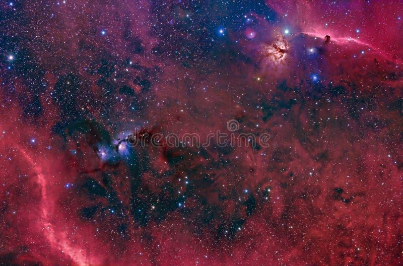 Horsehead, Vlam en M78 in Orion stock foto