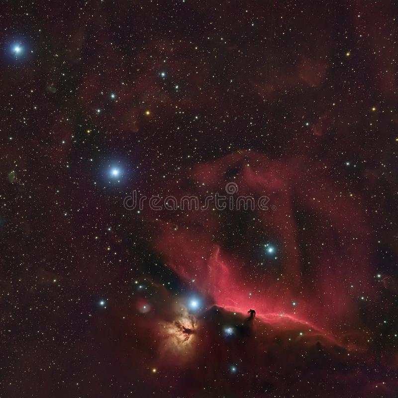 Horseheadnevel in Orion royalty-vrije stock fotografie
