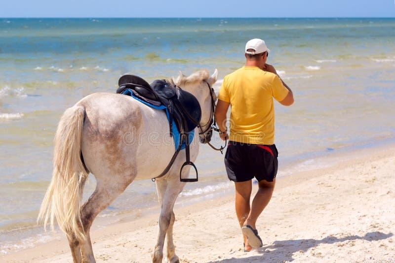 horseman arkivbilder
