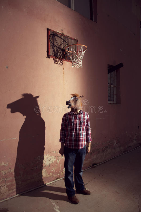 horseman royaltyfri fotografi