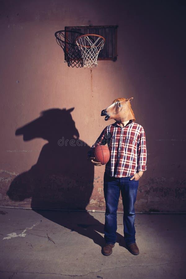 horseman royaltyfria bilder