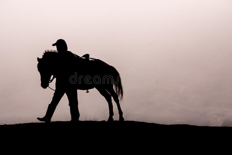 horseman royaltyfri bild