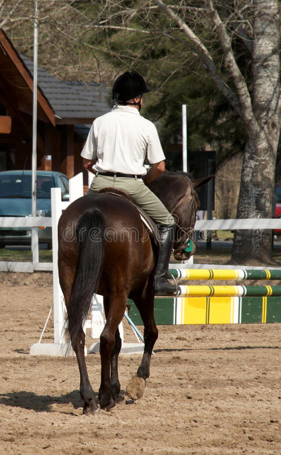 Download The Horseman On A Bay Horse. Stock Photo - Image: 11168090