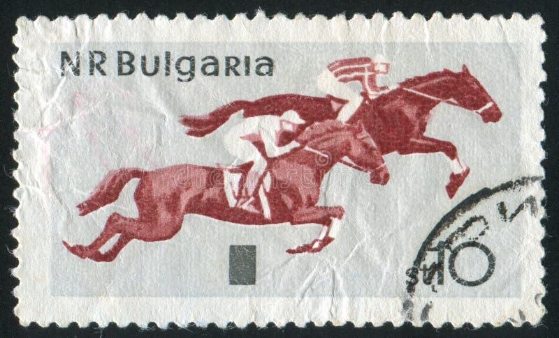 horsemanship royaltyfria foton