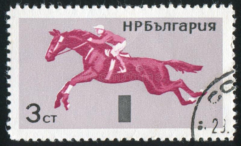 horsemanship arkivbild