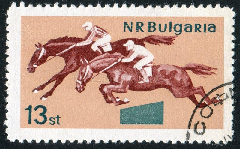 horsemanship royaltyfri foto