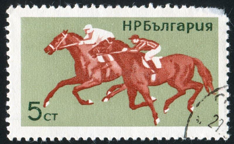 horsemanship fotografering för bildbyråer