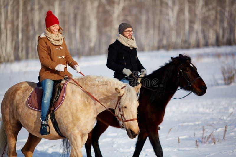 horsemanship arkivfoto