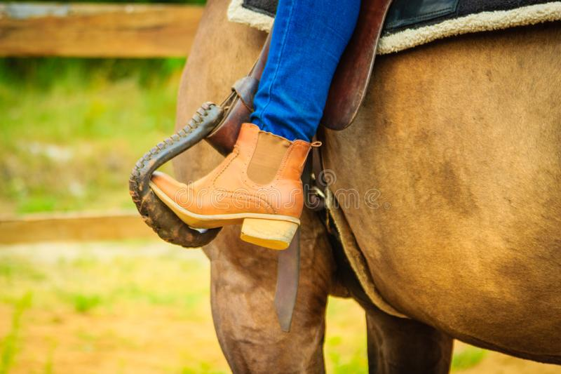 Woman foot in stirrup on horse saddle. Horsemanship equipment concept. Closeup of woman foot in stirrup on horse saddle royalty free stock photography