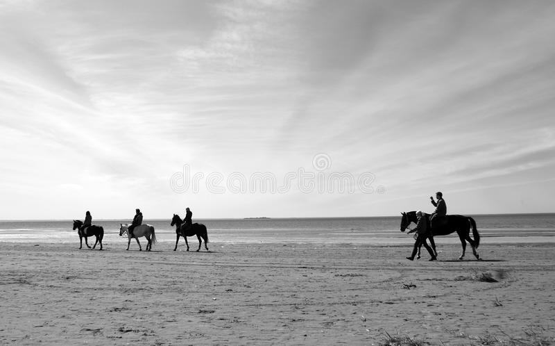 Horsemen. A group of people riding horses along the sandy beach (black and white stock images