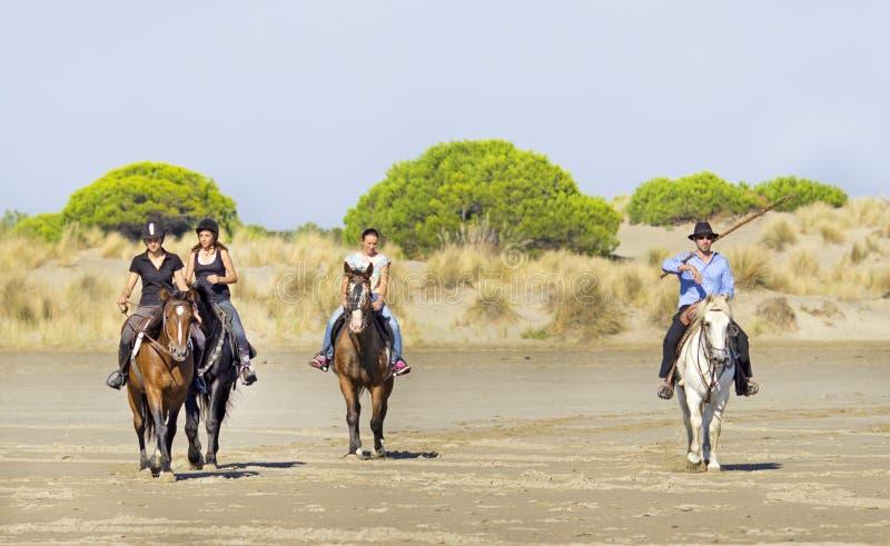 Horsemen on the beach. Horsemen and her horse on the beach stock images
