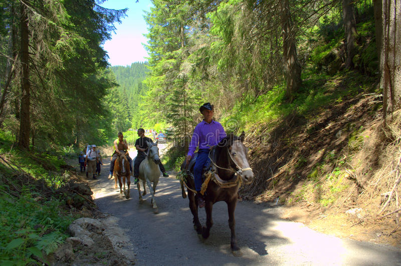 Horsemen on mountain road royalty free stock images