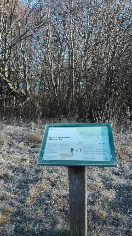 Horsens wildlife reserve royalty free stock photo