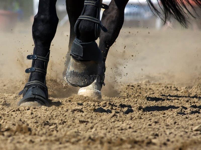 Horsepower. The hooves of horses running through the dust presenting horsepower royalty free stock photos