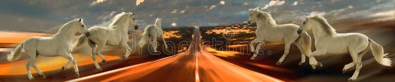 horsepower Konie i prędkość abstrakcja ilustracji