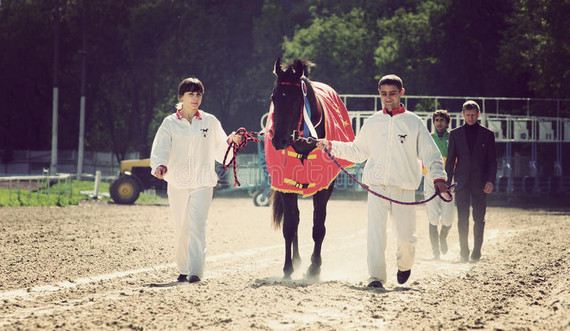 Horserace voor de prijs   royalty-vrije stock foto
