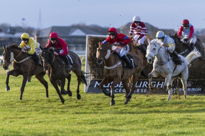 Horseracing fotos de stock royalty free