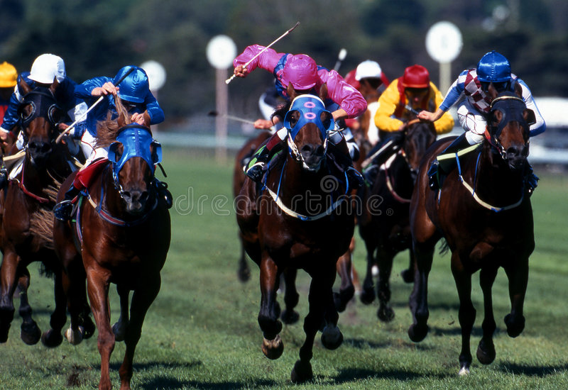 Horseracing_action003