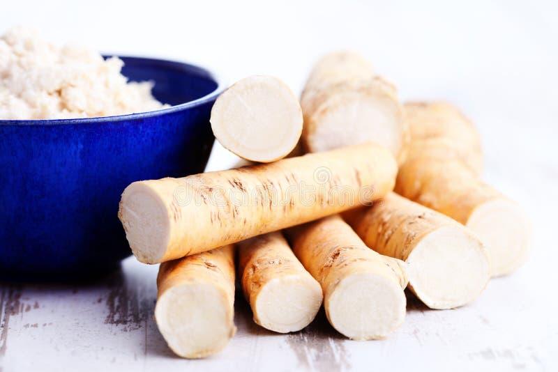 horseradish imágenes de archivo libres de regalías
