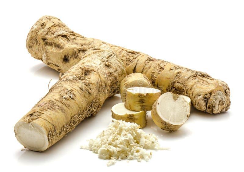 Horseradish royalty free stock photography