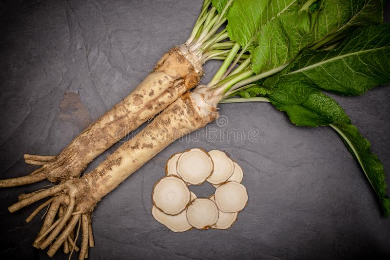 Horseradish and slices from top view. royalty free stock image