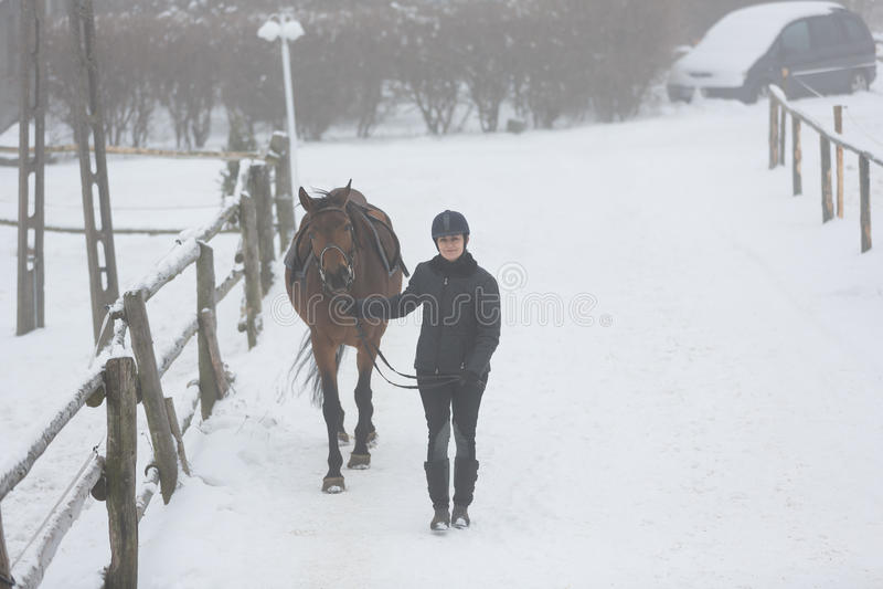 Horserider que camina con el caballo imagen de archivo