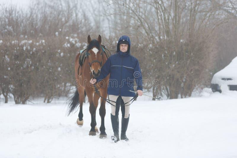 Horserider que camina con el caballo imagen de archivo libre de regalías
