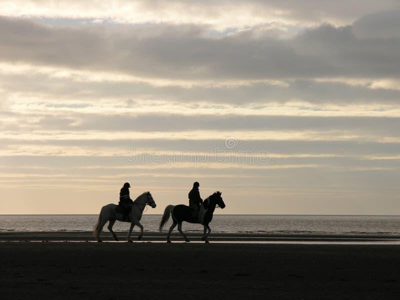 Horseriders stock afbeeldingen