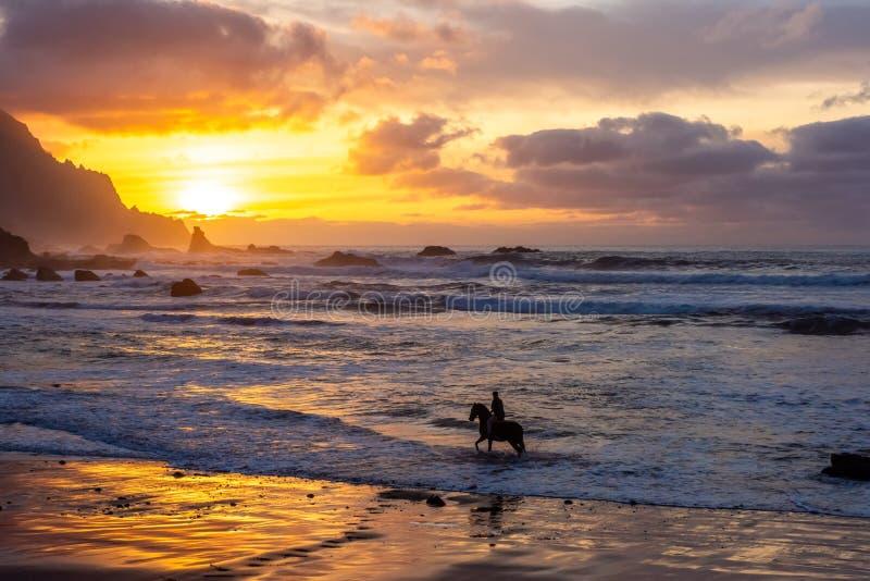 Horseriding przy ocean plażą na zmierzchu tle fotografia royalty free