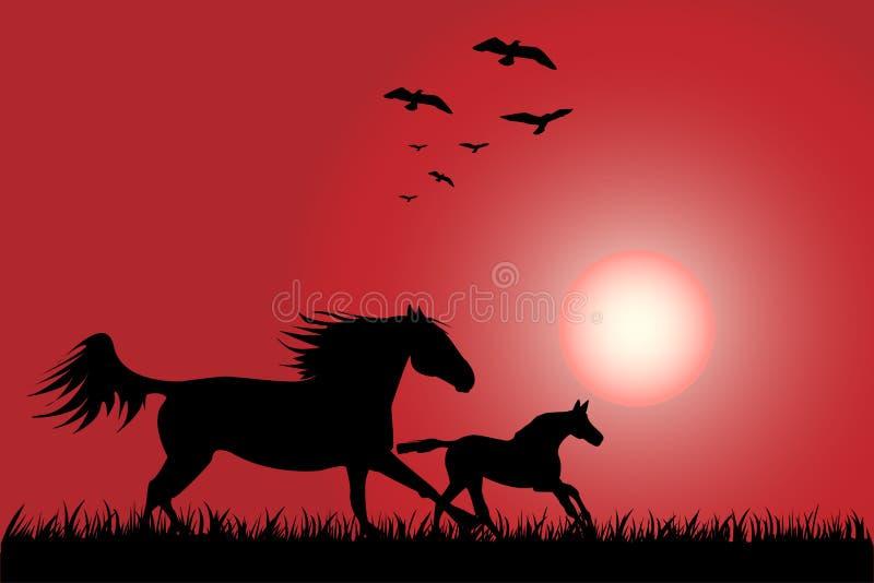 Download Horses stock vector. Image of animal, stallion, running - 16465246
