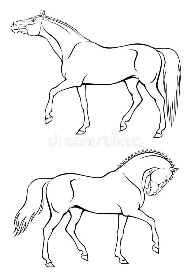 Download Horses stock vector. Illustration of pasture, mane, free - 22443625