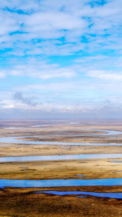Horses and Blue sky white clouds Frozen river Yellow grass in Bayanbulak in Spring royalty free stock photo