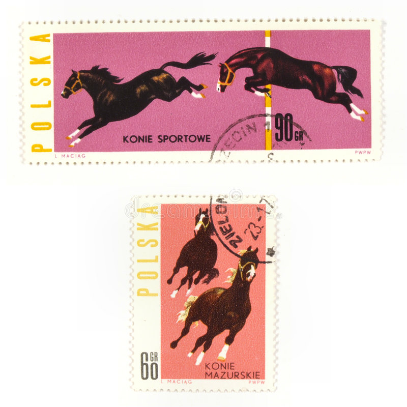 Horses on collectible stamps. Collectible stamps from Poland. Set with horses royalty free stock image