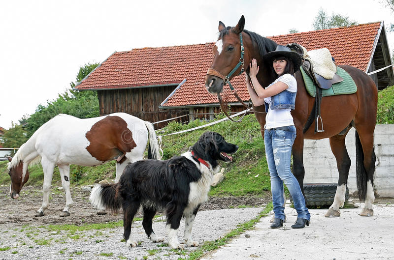 With horses and dog. A young girl on the farm with horses and dog stock image