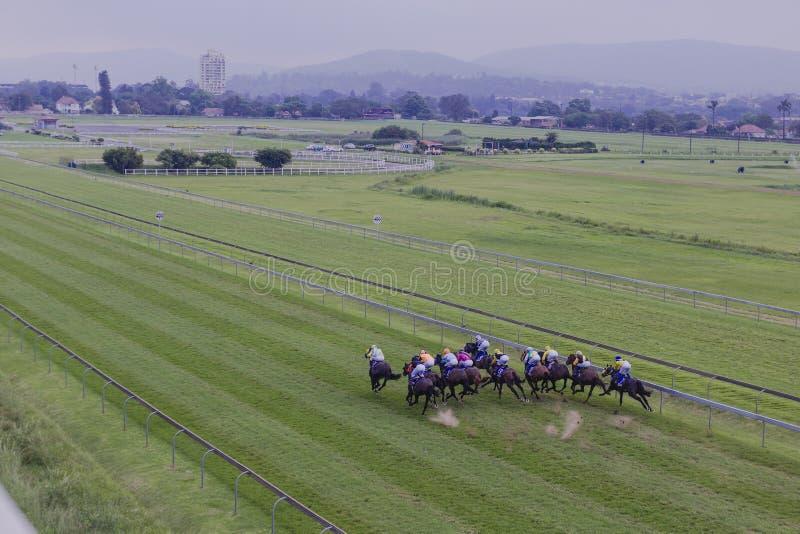Download Horses Jockeys Sprint Overhead Editorial Stock Image - Image of sprint, image: 27798534